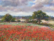 Poppies on Winston Hill